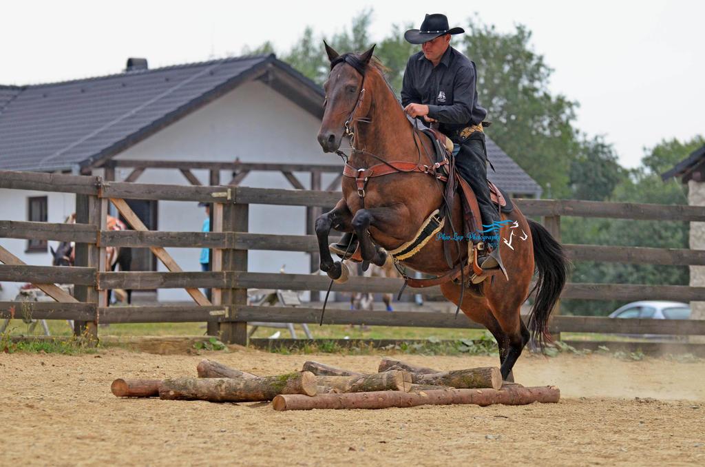 Cowboy race by Desirestar