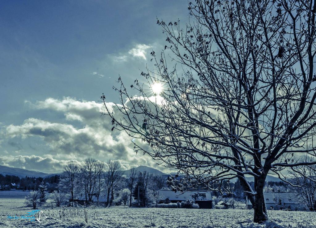 Winter sky by Desirestar
