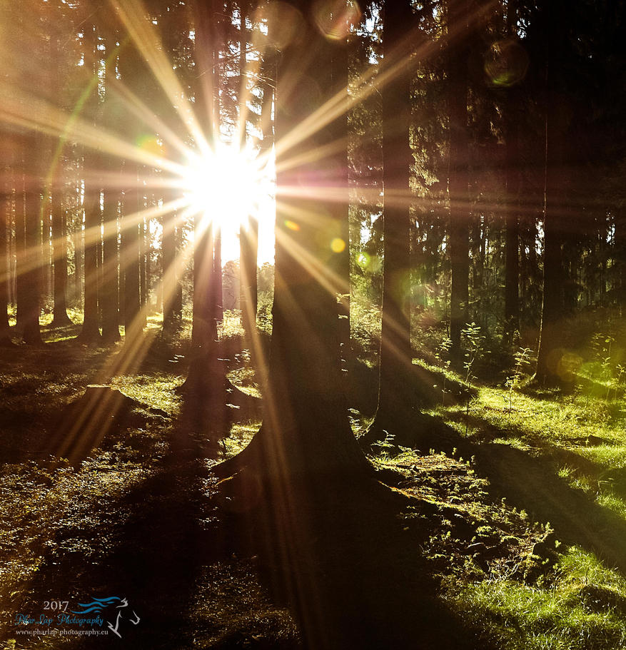 Church of sun and light 1 by Desirestar