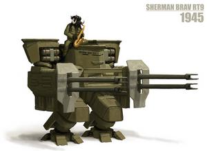 Sherman Brav