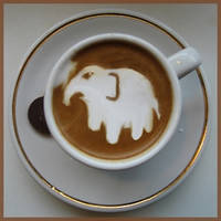 Elephant Coffee by Pupiattola