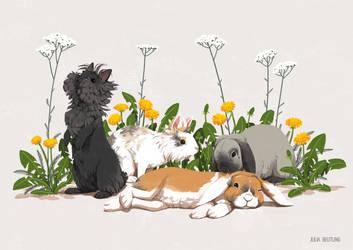 Portrait of four bunnies