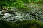 River stock 3
