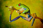 Grungy frog by AngiWallace