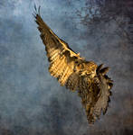 Flight on the wildside