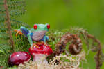 The Frog and toadstools 2