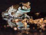Eating frog