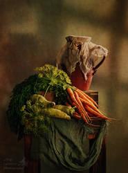 Carrots still life