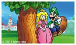 Super Luigi 3D Land: Luigi's Happy End