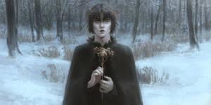 Yarrow Witch