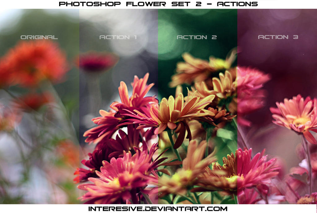 Photoshop Flower set 2 - Actions by interesive