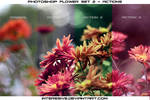 Photoshop Flower set 2 - Actions