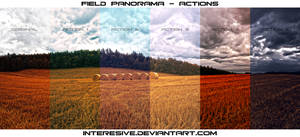 Field Panorama - Actions