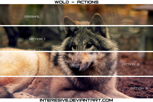 wolf - Actions