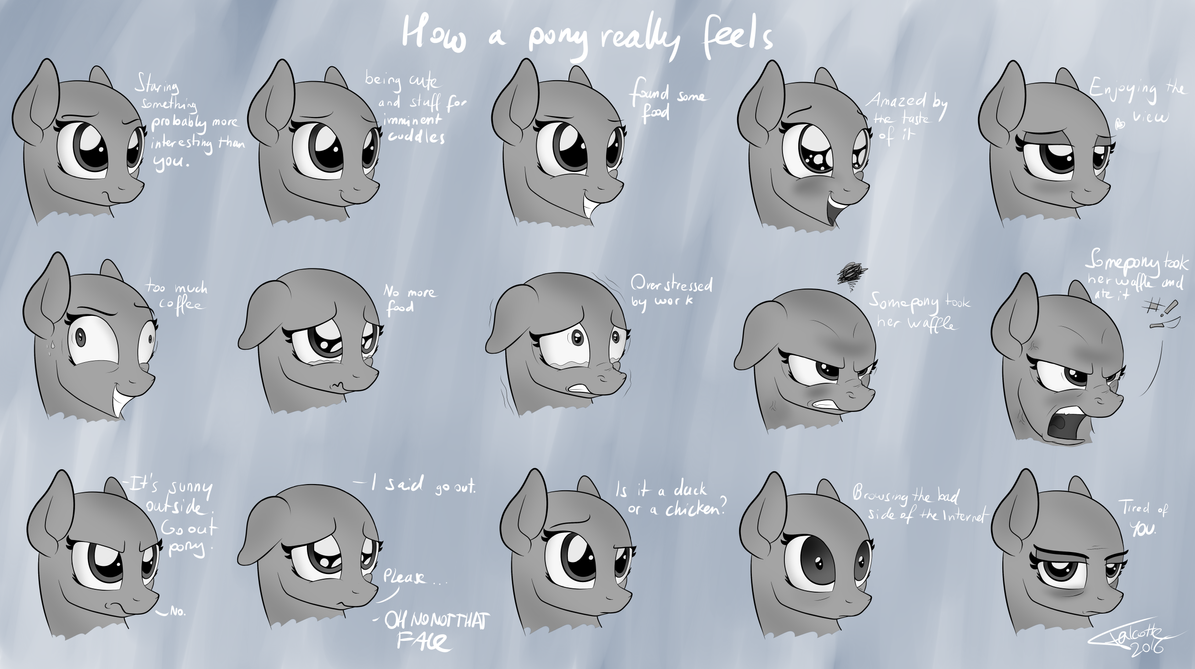 How a pony really feels by Falcotte