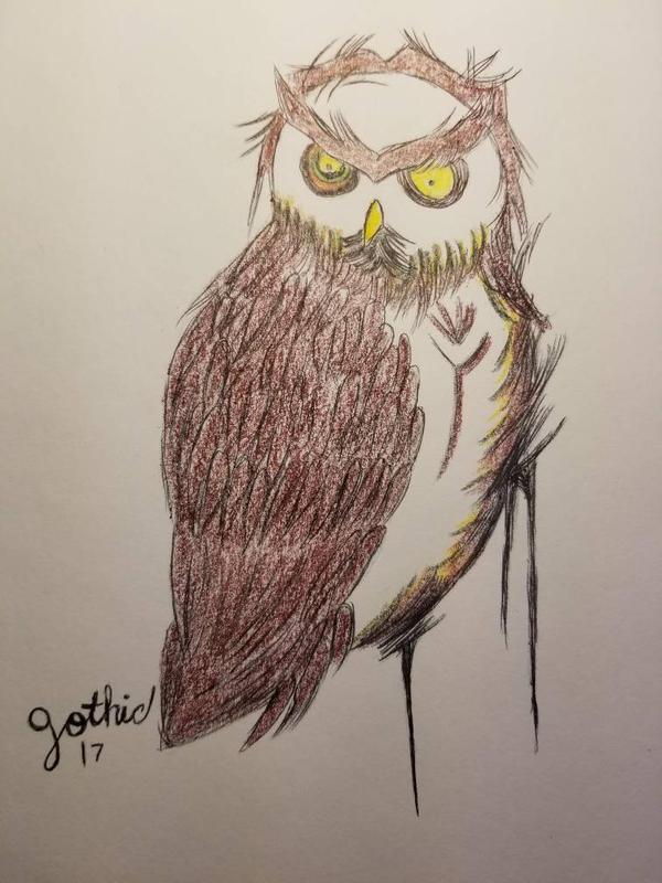 owl tattoo design by thatgothgirl666 on DeviantArt