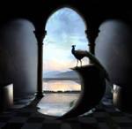 Peacock vs. Dali
