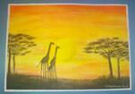 a giraffes family