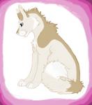 wolf husky hybrid fursona