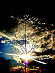 Magical Sky VI