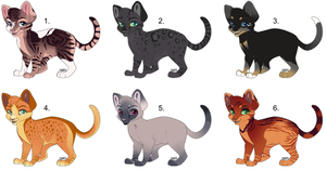 [6/6 OPEN] CAT ADOPTABLES - POINTS AND PAYPAL by spacepioneer
