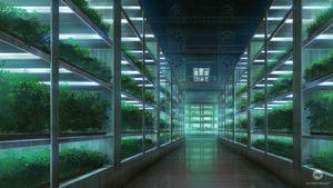 As We Know It: Greenhouse