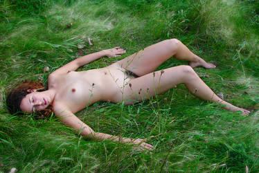 Grass by mlolya