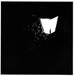 night moths and street lamp