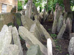 the old jewish cemetery 36