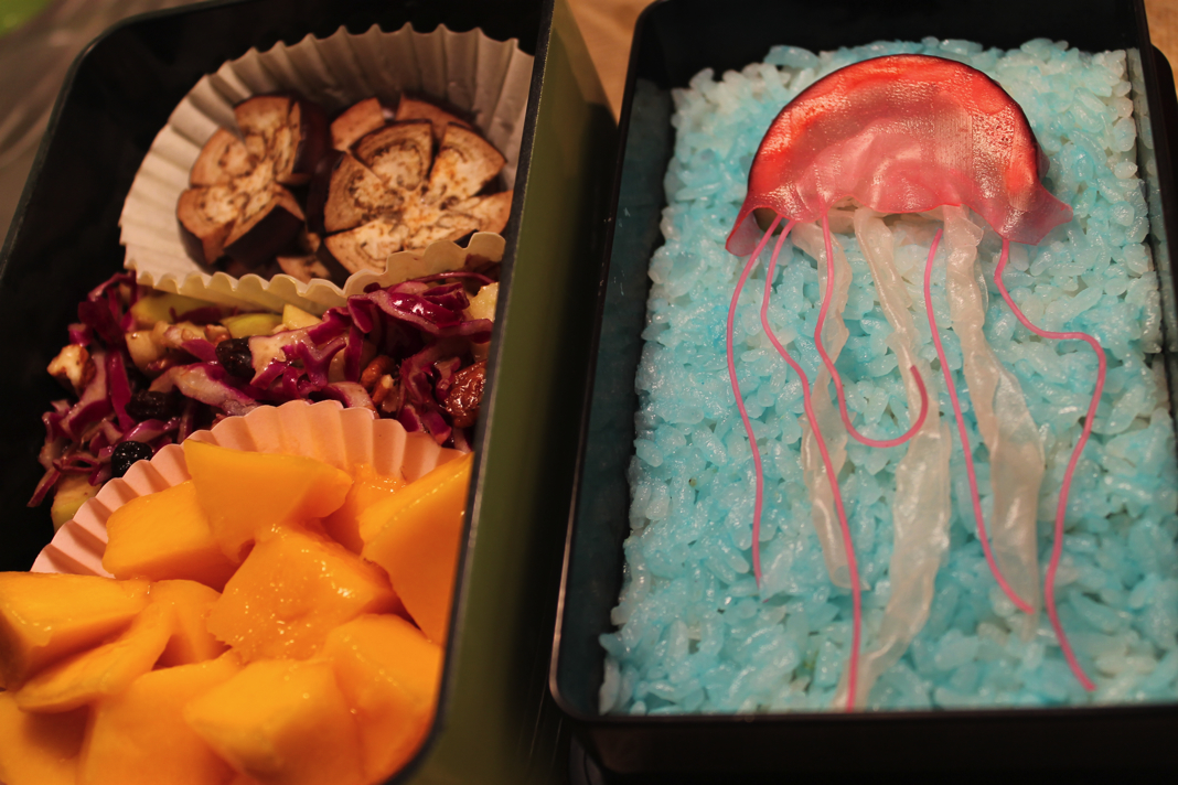 Jellyfish Bento by mindfire3927