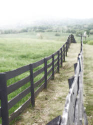 Two Sided Fence by Rissa90