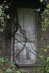 Overgrown Door by Rissa90