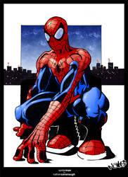 SpiderMan Final by himynameiznate