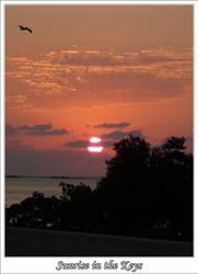 Sunrise in the Keys by paulobecker