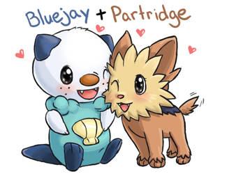 Bluejay + Partridge by tsuta