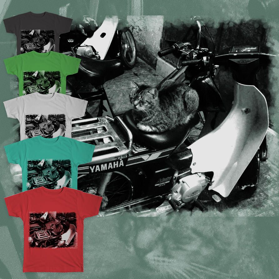 Cat on motorbike preview by tsuta