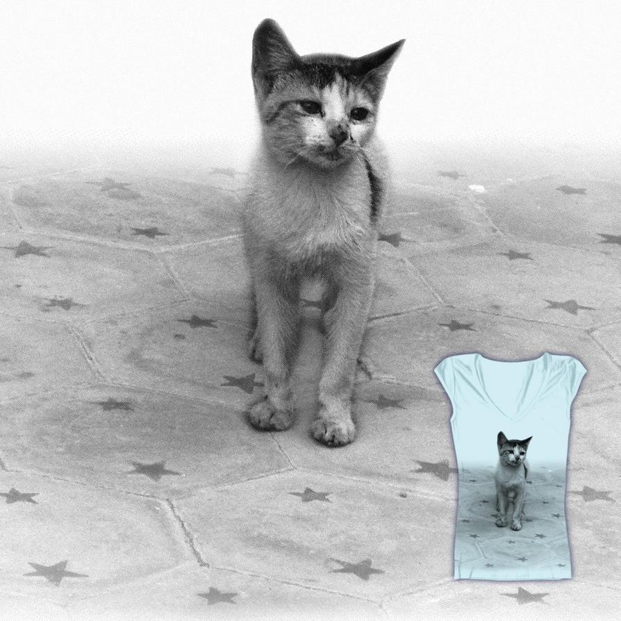 Street kitten on a starry background by tsuta