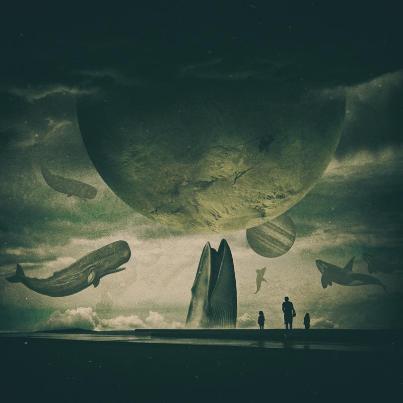 Whales Island by Al-Nahas