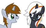 littlepip and velvet  remedy