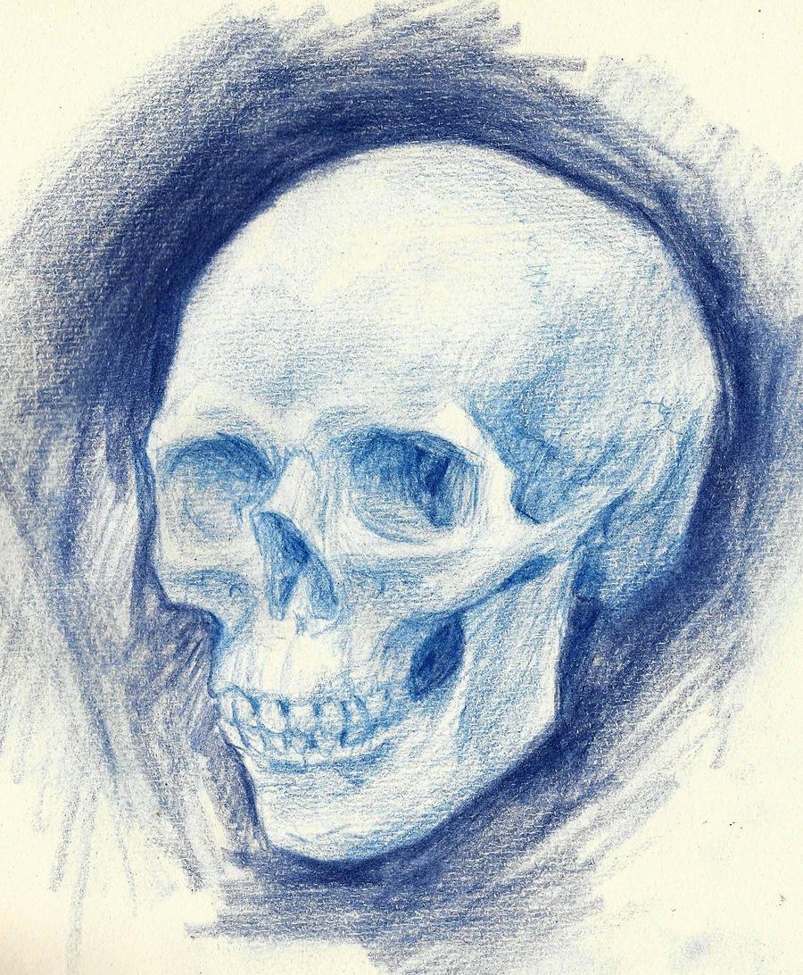 Skull study by RekTruk