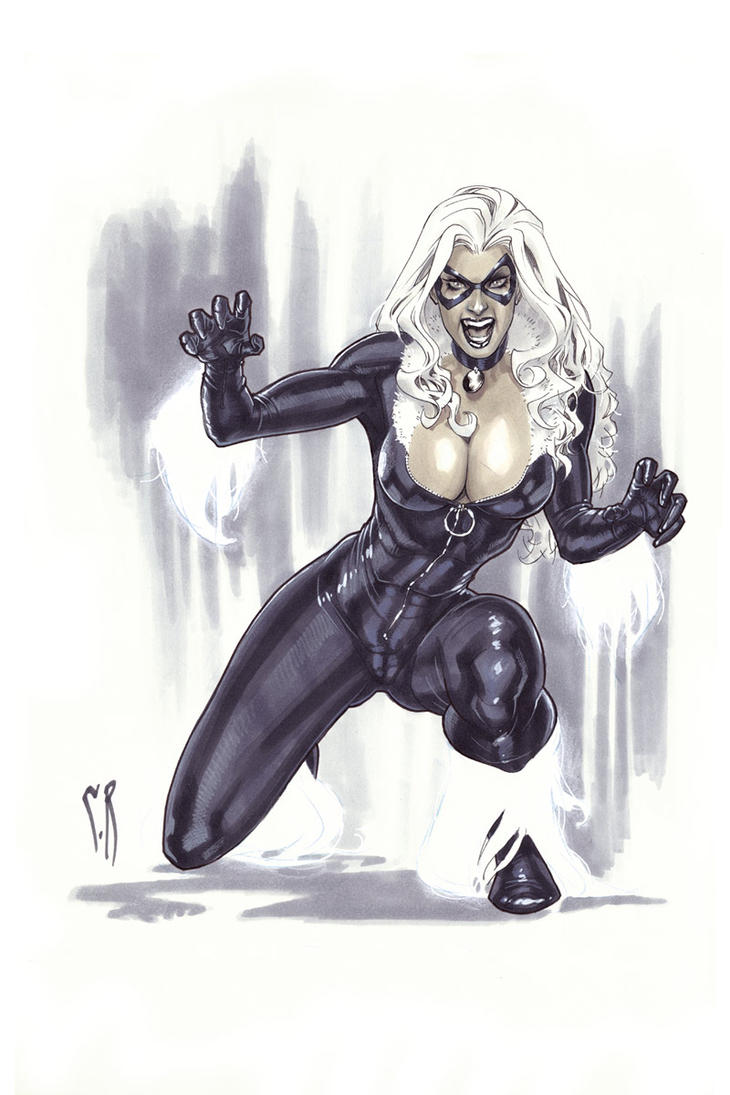 Black Cat hissing by StephaneRoux