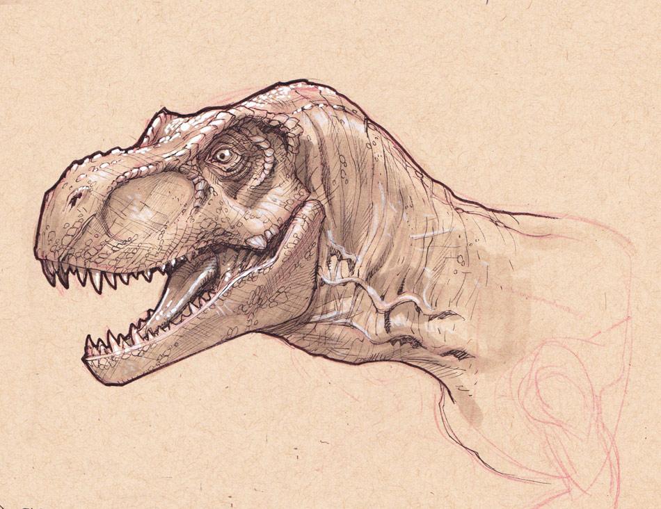 T-Rex head study by StephaneRoux