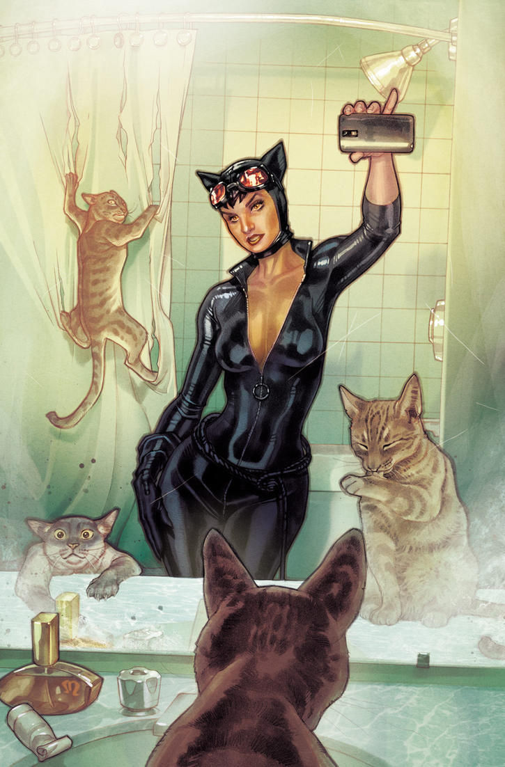 Catwoman  Selfie Variant cover. by StephaneRoux