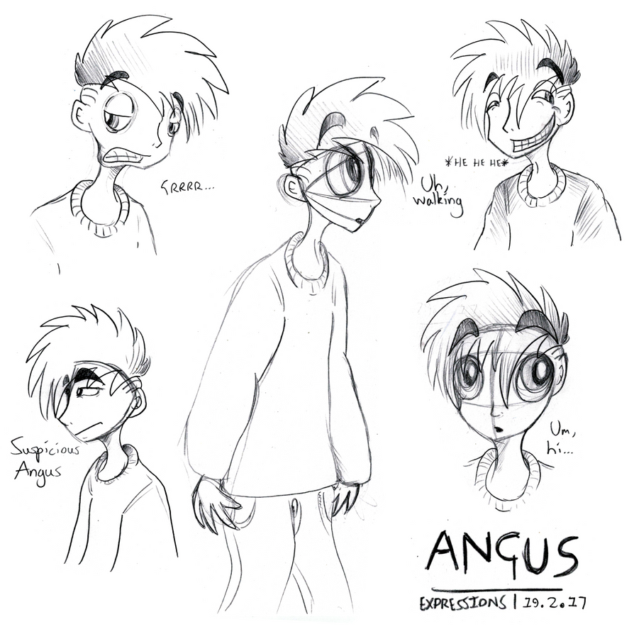 Angus Expressions 19/2/17 by Gourlish