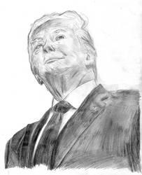 Donald Trump Study