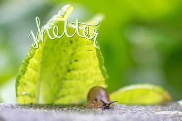 Slug Life: Jerry by dareme