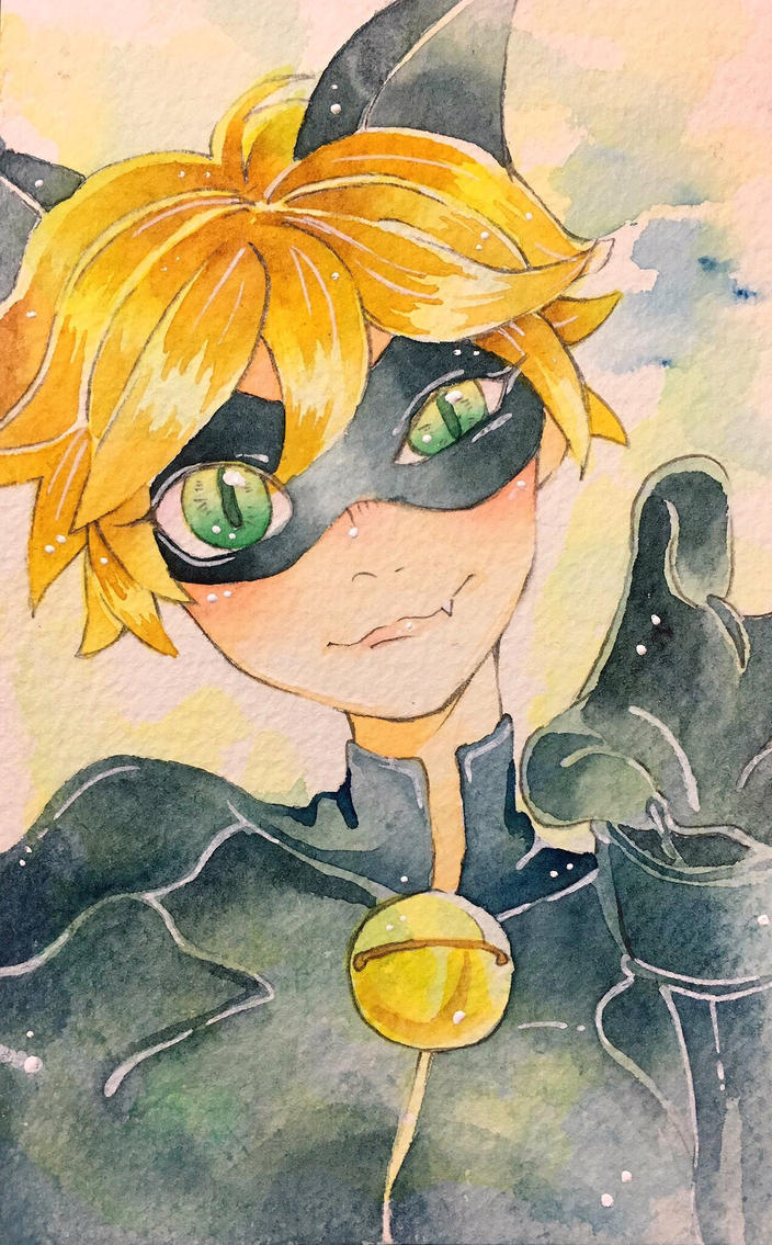 Cat noir by nula18