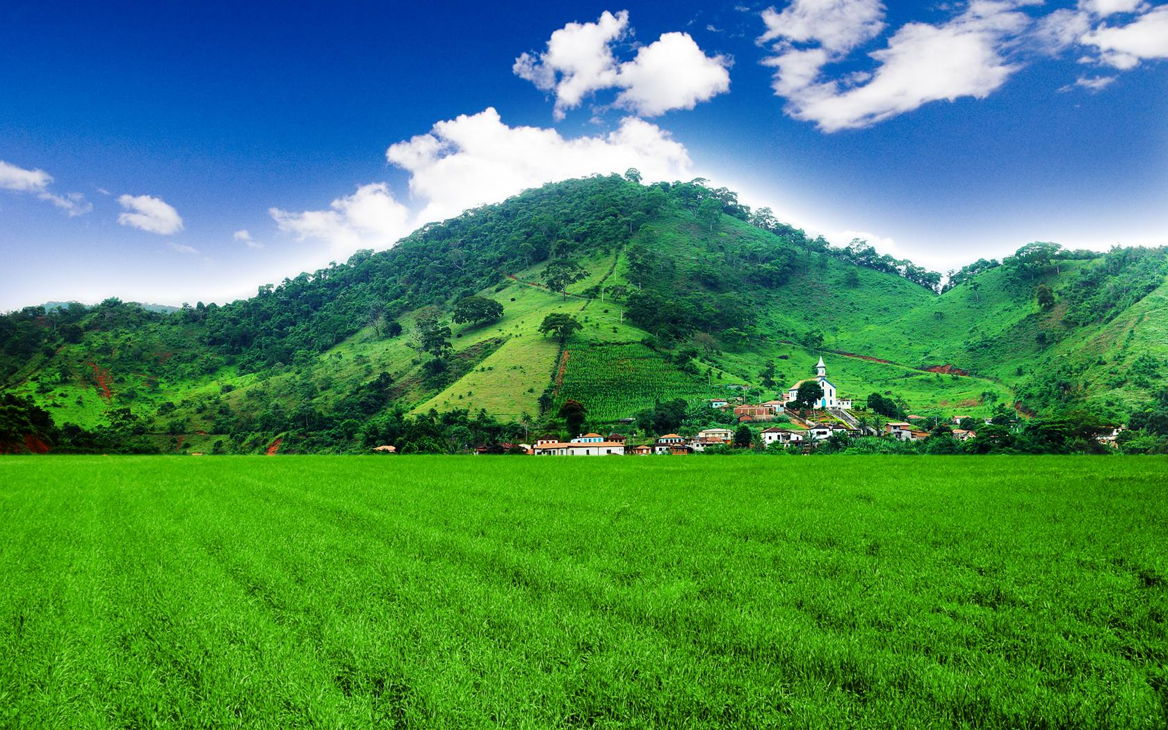 mountain and the greenary - photo #32