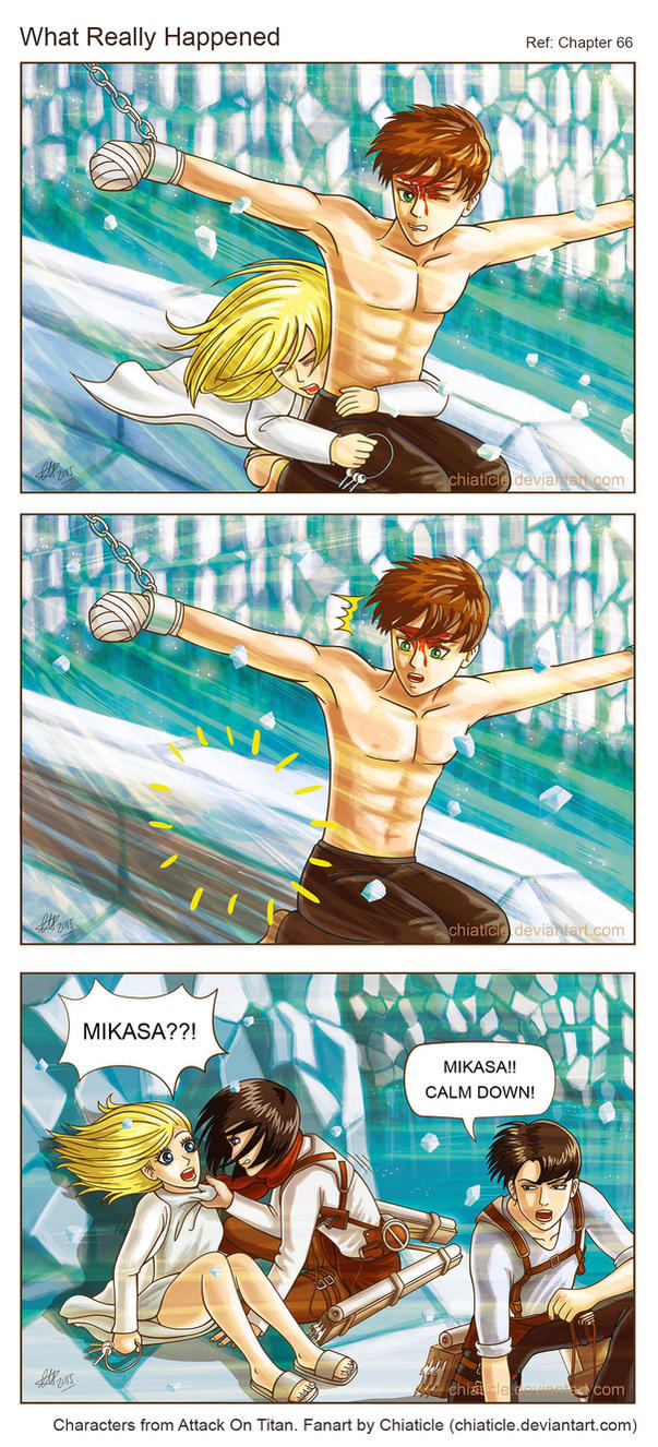 AOT: What Really Happened by Chiaticle