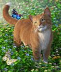 Springtime Days by cwrw